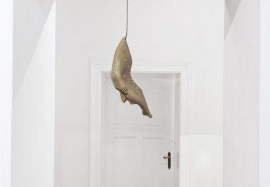 Ausstellung Aqua Aura + Lidó Rico – Luisa Catucci Gallery